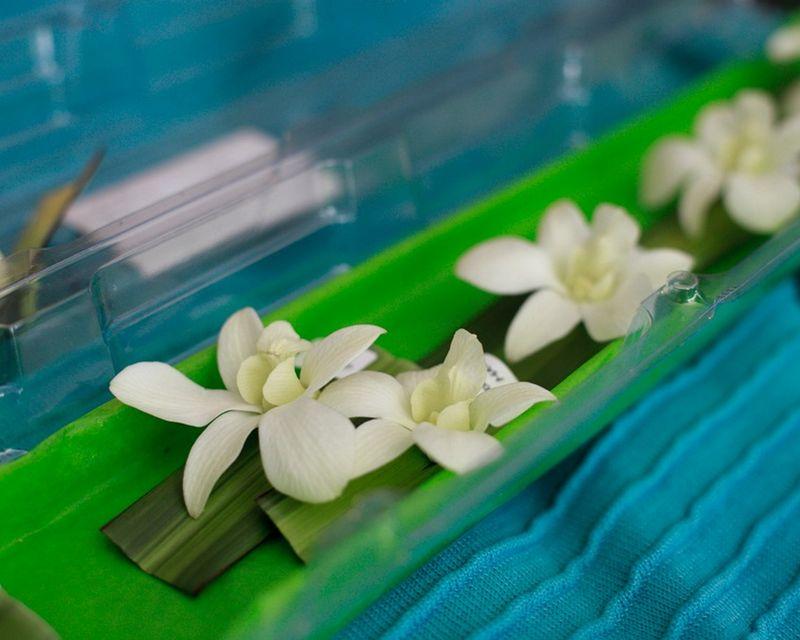 White Dendrobium Orchid Boutonnieres_Scarlet Petal