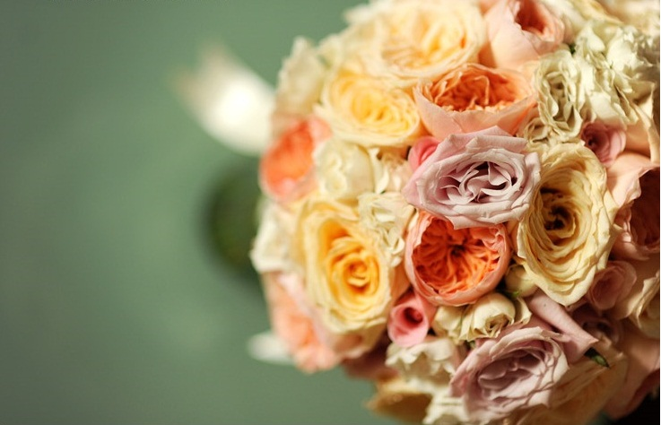 Garden Rose Bridal Bouquet_Scarlet Petal