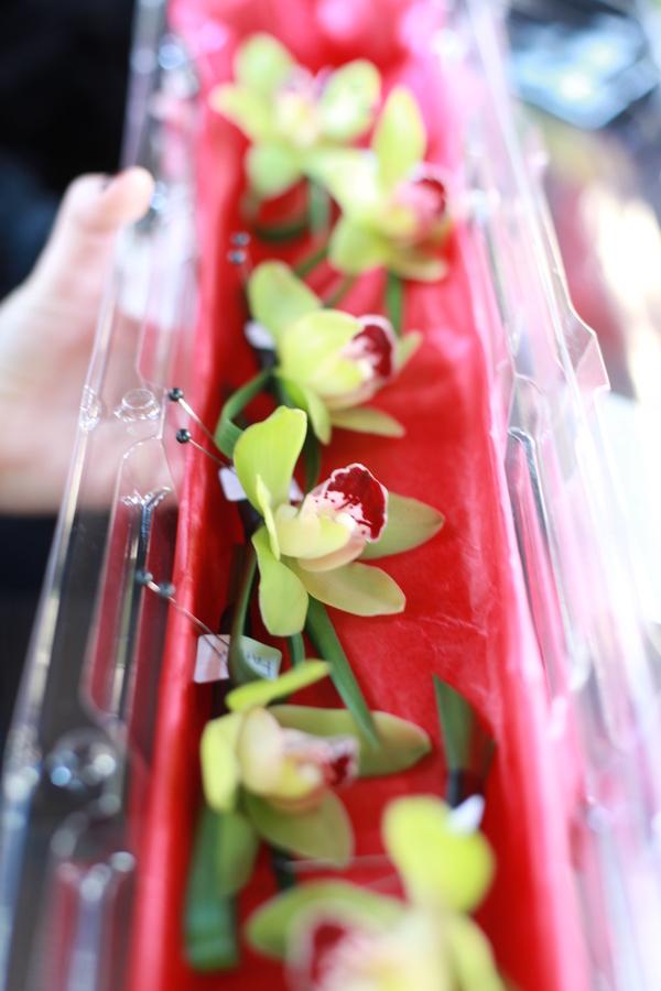 Green Cymbidium Orchid Boutonniere_Scarlet Petal Wedding
