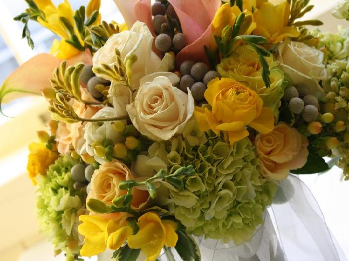 Kangaroo Paw Bouquet