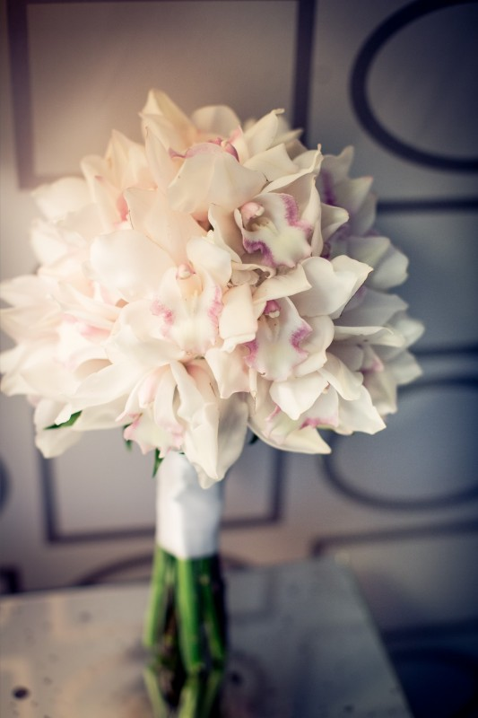 White Cymbidium Bouquet _ Scarlet Petal